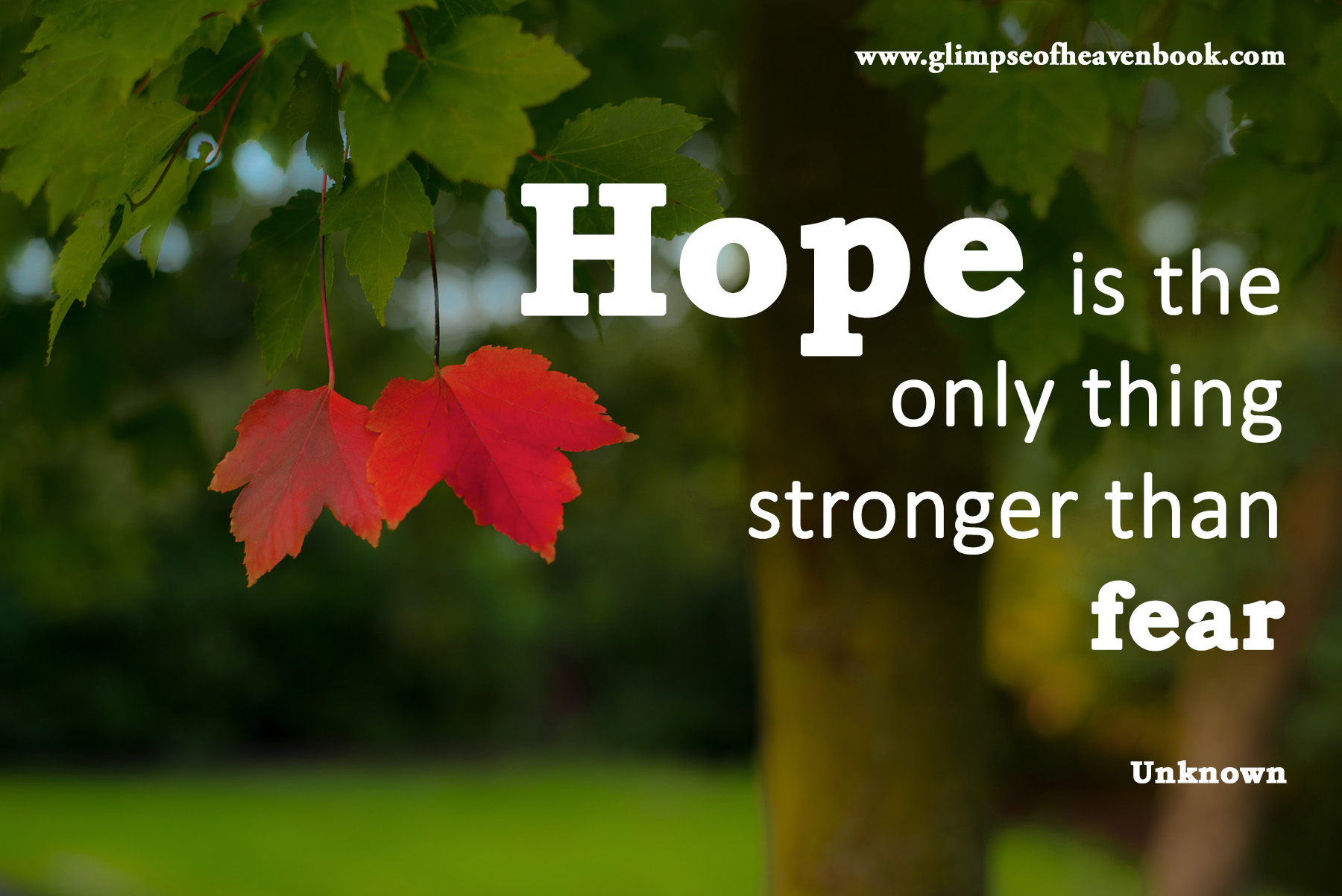 hope-is-the-only-thing-stronger-than-fear-lonely-1784160