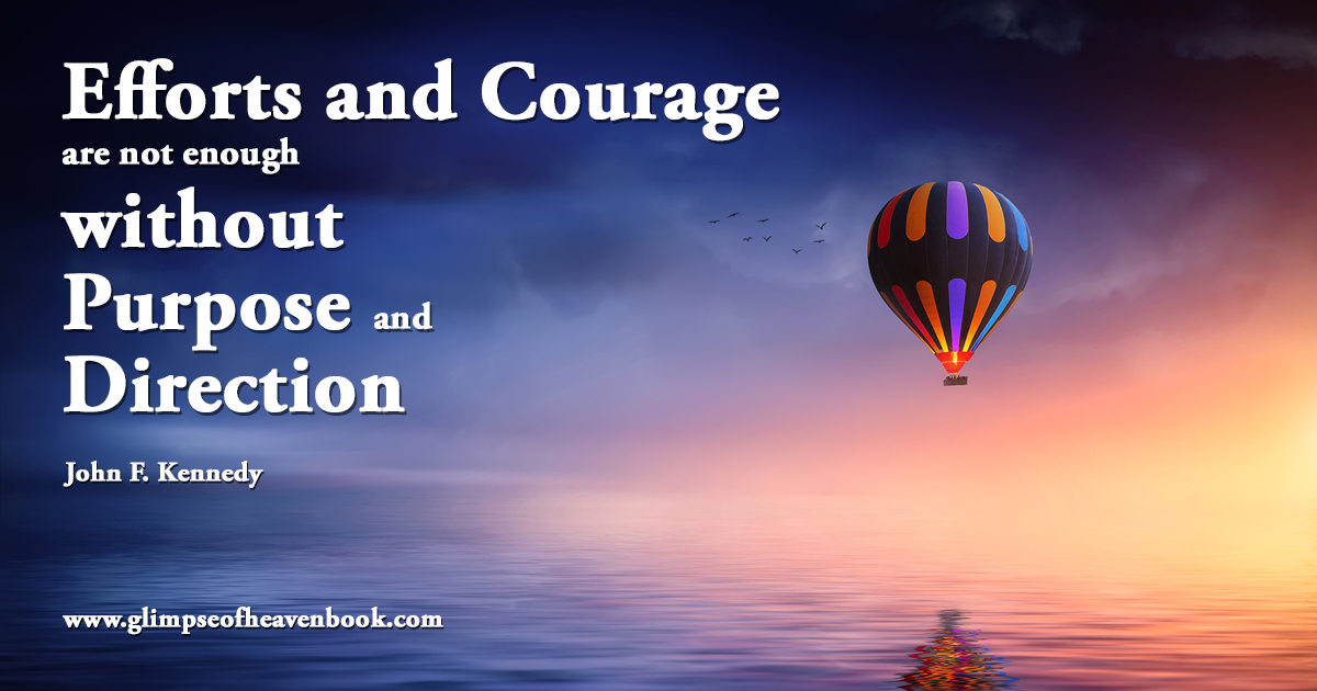 Efforts and Courage are not enough without Purpose and Direction John F. Kennedy